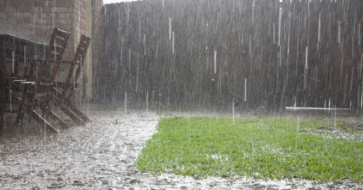 Heavy rain is expected in most states today